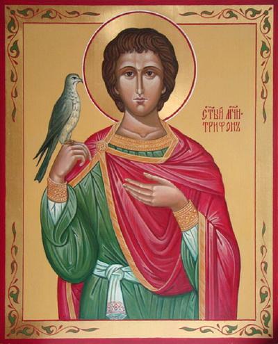 Святой мученик Трифон.jpg