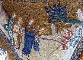 Проповедь в Неделю 7-ю по Пятидесятнице. Архимандрит Илия (Рейзмир)