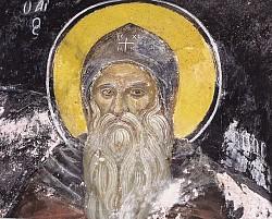 День памяти  преподобного Памвы (Памво) пустынника, Нитрийского