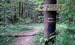 Туристская экотропа «Дорога в Лавру» приглашает в путь из Москвы в Сергиев Посад