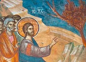 Троицкие листки, № 613. Бесплодная смоковница. Воспоминания Великого Понедельника