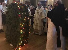 Архиепископ Феогност совершил Литургию в Зосимовой пустыни