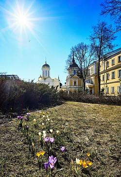 Архиепископ Иннокентий (Борисов) Херсонский. Слово о весне, третье